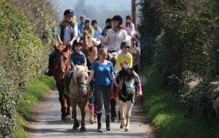 pony rides ireland