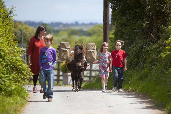 donkey walking children ireland