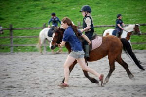 horse riding lessons galway