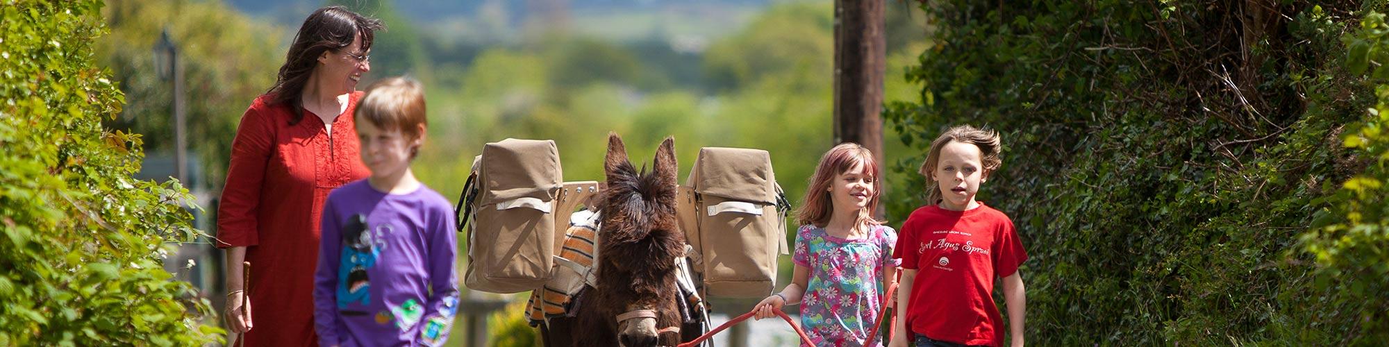 kids walking donkey holiday