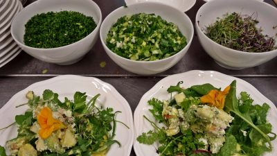 salads from the organic garden